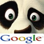 Search Engine Optimisation Panda by Google